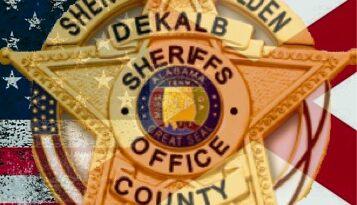 DeKalb County Sheriff's Office 2020 Statistics